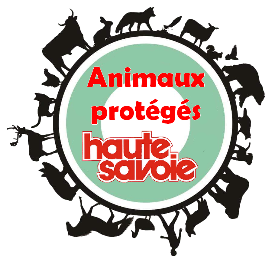 protection-animale.png